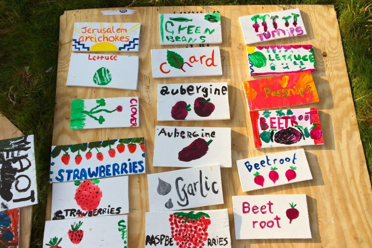 veg name cards